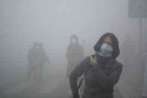 contaminacio