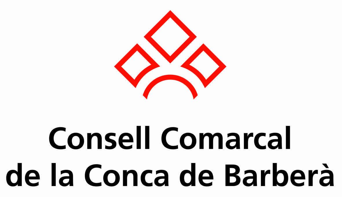 logo_Consellcolorv.jpg