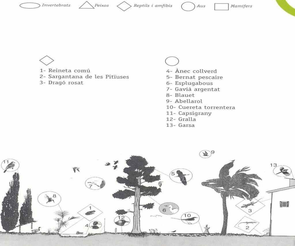 parcs i jardins (zoo)