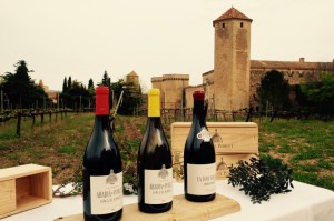 nous-vins-del-celler-abadia-de-poblet