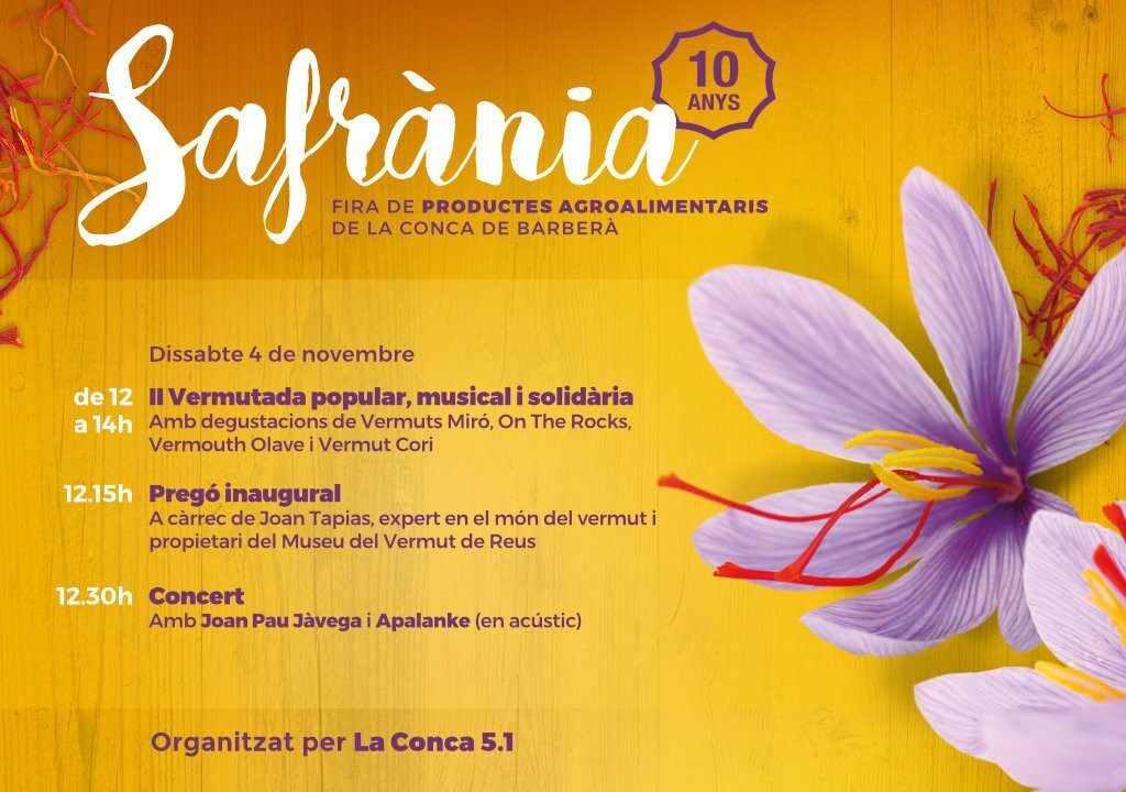 CONCA51-3-1024x720SAFRANIA17