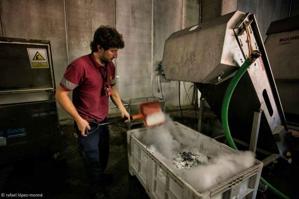 Utilització de gel sec o neu carbònica per a refredar el raïm seleccionat. Verema i vinificació del vi Mas La Plana. Cellers Torres. DO Penedès. Pacs, Alt Penedès, Barcelona