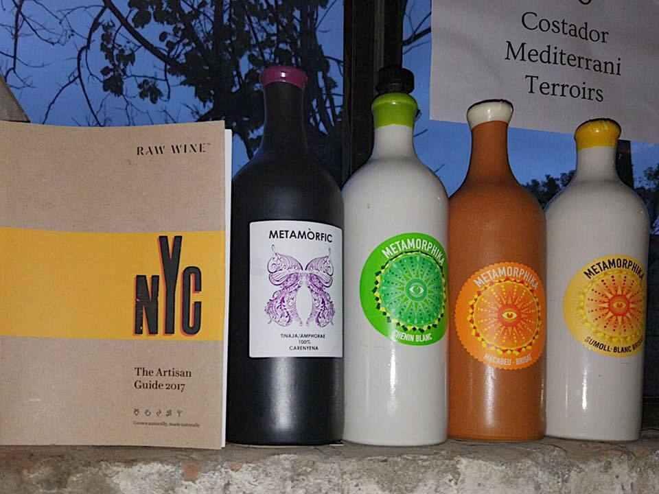vins costador