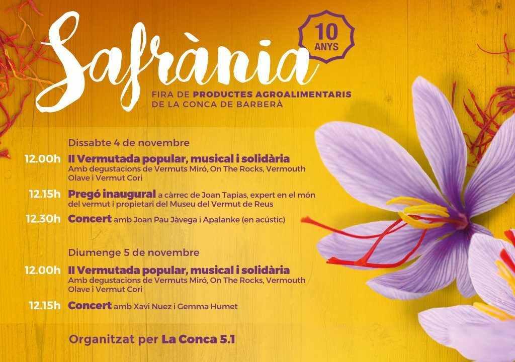 CONCA51-2-1024x720SAFRANIA17